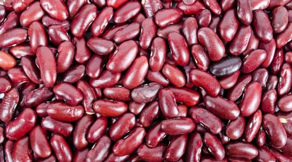 Lectins and Leaky Gut Syndrome